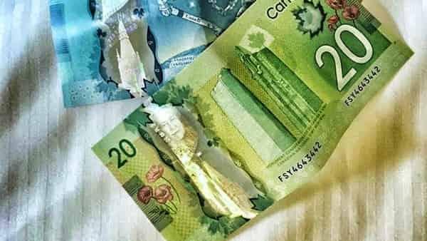 Канадский Доллар прогноз USD/CAD на 30 июня 2020
