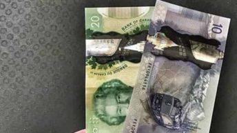 Канадский Доллар прогноз USD/CAD на 24 января 2020
