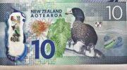 NZD/USD прогноз Форекс на неделю 27 — 31 января 2020