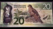 NZD/USD прогноз Форекс на сегодня 12 декабря 2019