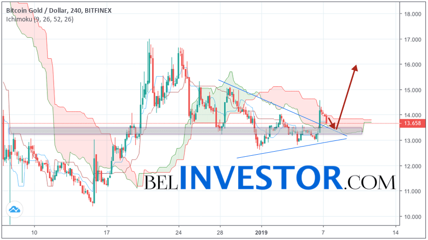 Криптовалюта Bitcoin Gold прогноз на 8 января 2019